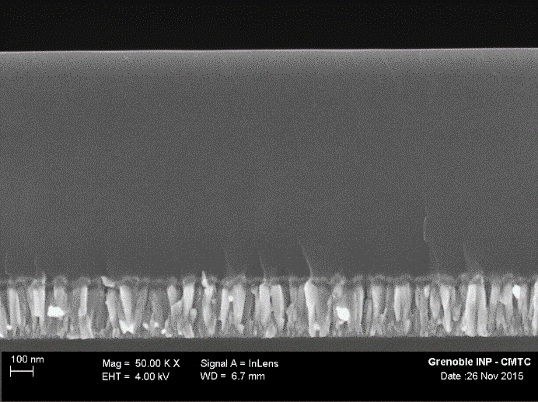 Figure 4: Photo MEB FEG (50kX) of coating film cross section (Silicon substrate)